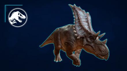 Species Profile - Chasmosaurus