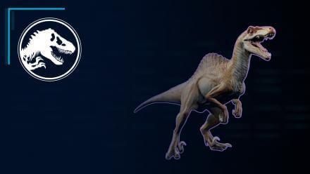 Hybrid Profile: Spinoraptor